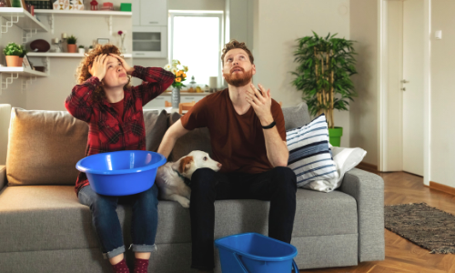 Photo of a couple and their dog in their living room, with a leaking ceiling.